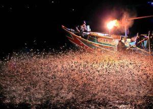 台灣海洋文化:2018金山磺火季!台灣海洋文化體驗首推10選