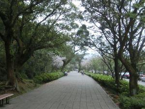 湖山綠地.橫嶺古道環狀步道