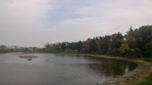 小南海、林初埤