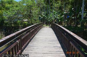 澀水森林步道