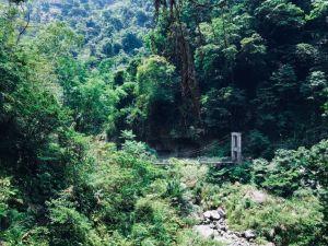 嘉義青年嶺步道+蝙蝠洞+燕子崖+雲潭瀑布