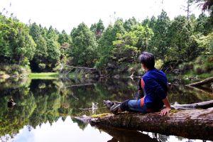 台灣的雲場池~太平山祕境尋幽