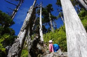 【山岳之美】小黃的台灣百岳影像紀錄