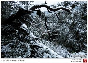 20160124寒潮爆發.雪漫紗帽山