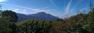 櫻花公園→藤枝山來回