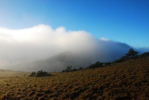 大水窟山的早晨,雲海鋪路