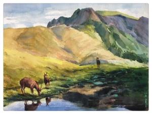 【自然畫廊】逐鹿白石池