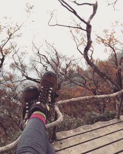 太平山山毛櫸步道