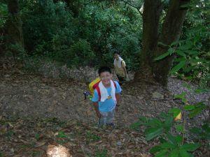 20080823 惠蓀林場步道