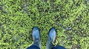 春寒料峭、獨訪松蘿湖、探南勢溪源