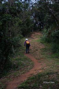 鶯歌 光明山稜線與福源山步道O型