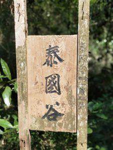 柴山步道(北柴山)