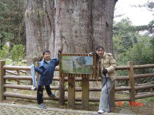 2007 大雪山森林步道