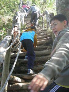 20090101大坑2號步道
