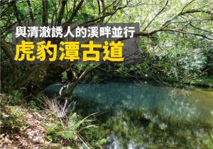 【新北市】虎豹潭古道、三方向山(未竟)、樓仔厝古道