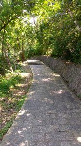 內湖碧湖親山步道