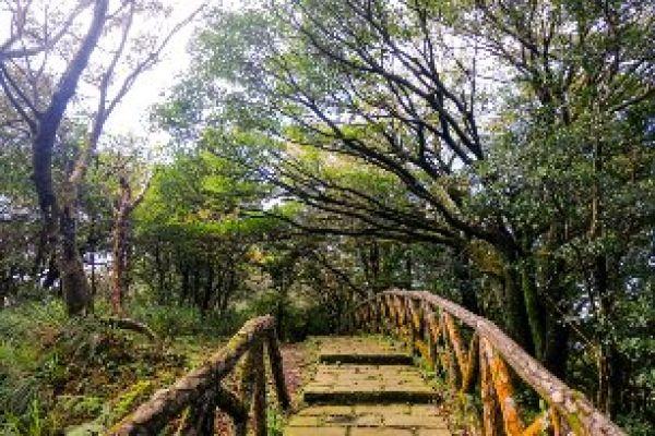 中正山觀景台