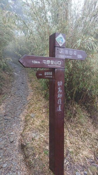 2018/3/9 奇萊南峰(天...