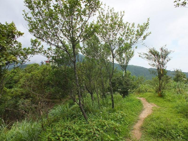 太和山步道