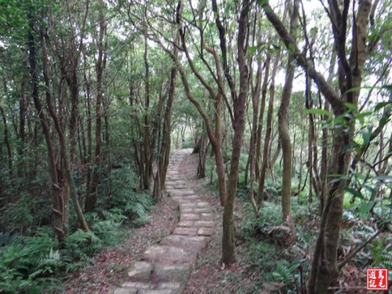 桃源谷步道(石觀音線)