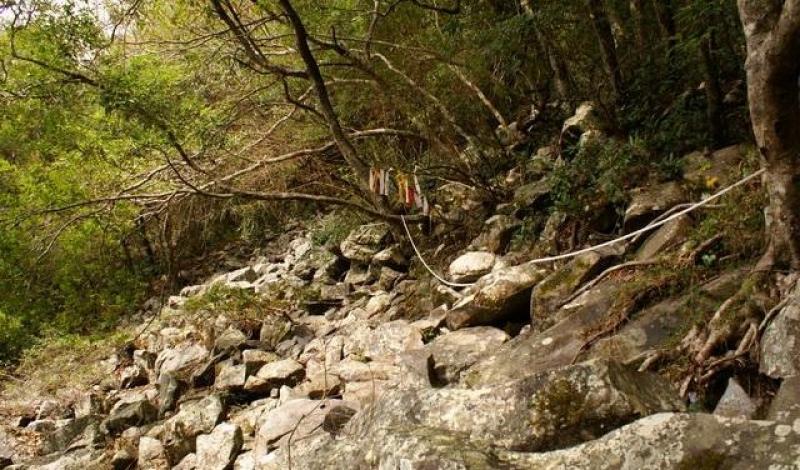 波津加山步道