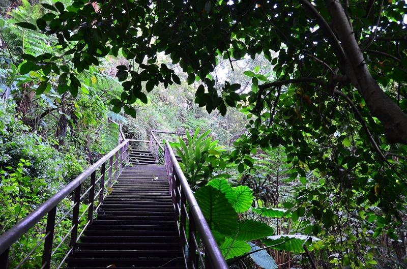 香山森林步道