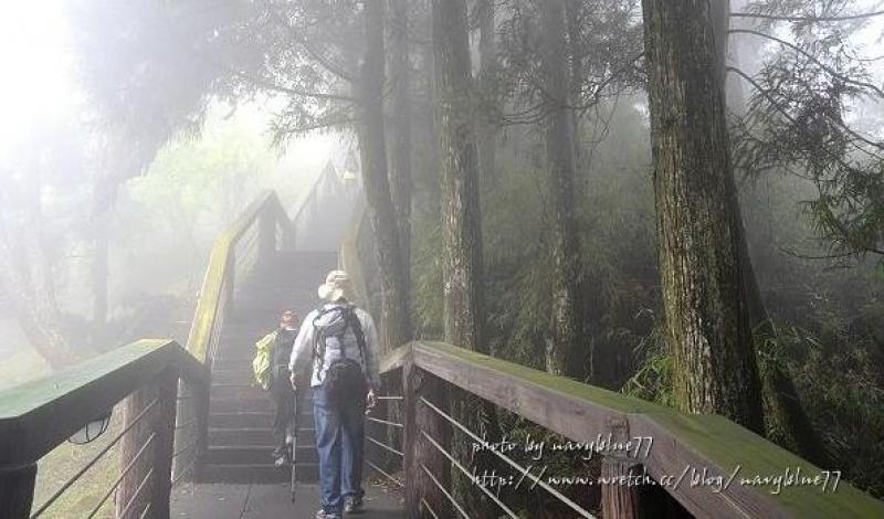 溪頭天文台登山步道