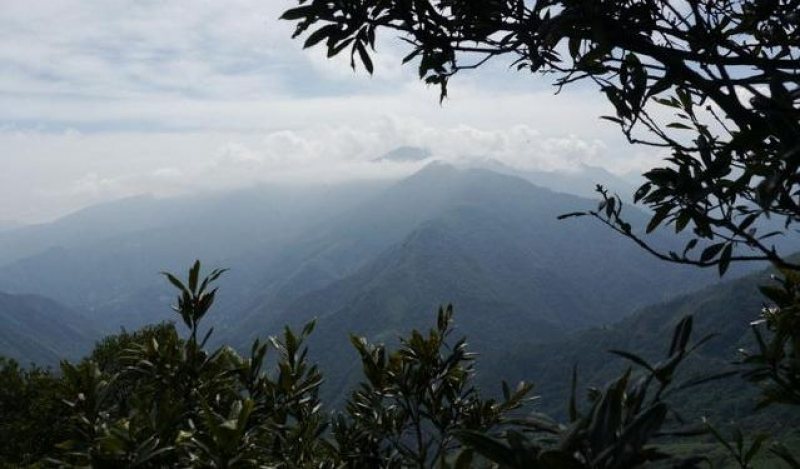 芝生毛台山